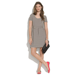 Bistro Dress in Ridgestripe